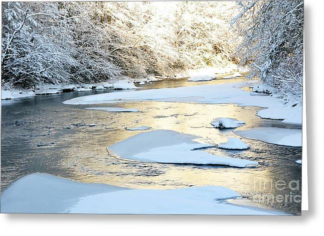 White River Scene Greeting Cards - Fresh Snowfall Gauley River Greeting Card by Thomas R Fletcher
