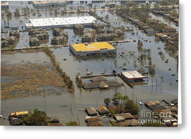 Noaa Greeting Cards - Hurricane Katrina Damage Greeting Card by Science Source