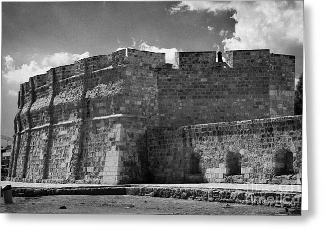 Larnaca Greeting Cards - Larnaca fort dating from 1625 in Larnaka republic of cyprus europe Greeting Card by Joe Fox