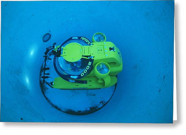 Automated Greeting Cards - Research Submarine Greeting Card by Alexis Rosenfeld