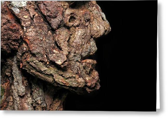 Revered  A natural portrait bust sculpture by Adam Long Greeting Card by Adam Long