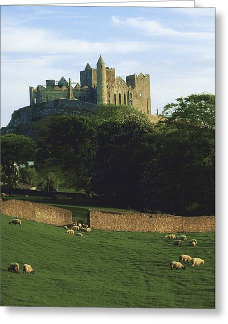 Collection Of Rocks Greeting Cards - Rock Of Cashel, Co Tipperary, Ireland Greeting Card by The Irish Image Collection