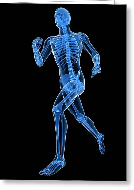 Running Skeleton, Artwork Greeting Card by Sciepro