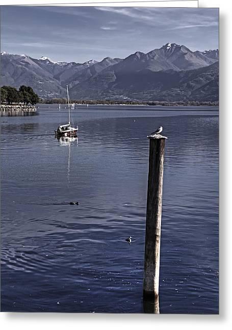 Stakes Greeting Cards - Sailing Boat Greeting Card by Joana Kruse