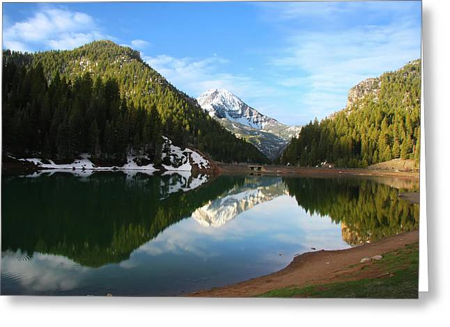 Peaceful Scenery Pyrography Greeting Cards - Spring reflections Greeting Card by Southern Utah  Photography