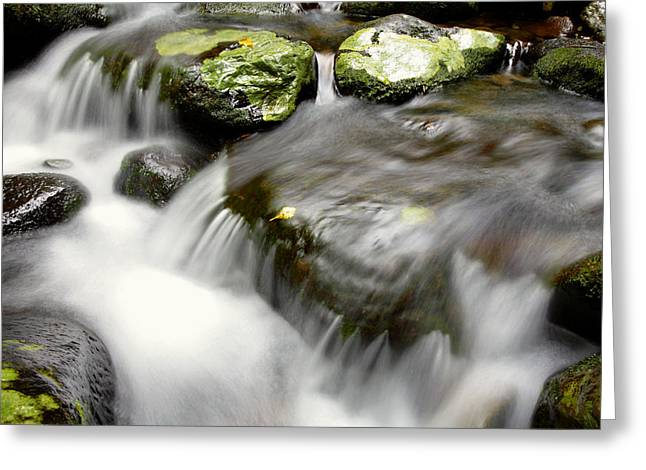 Stream Greeting Card by Les Cunliffe
