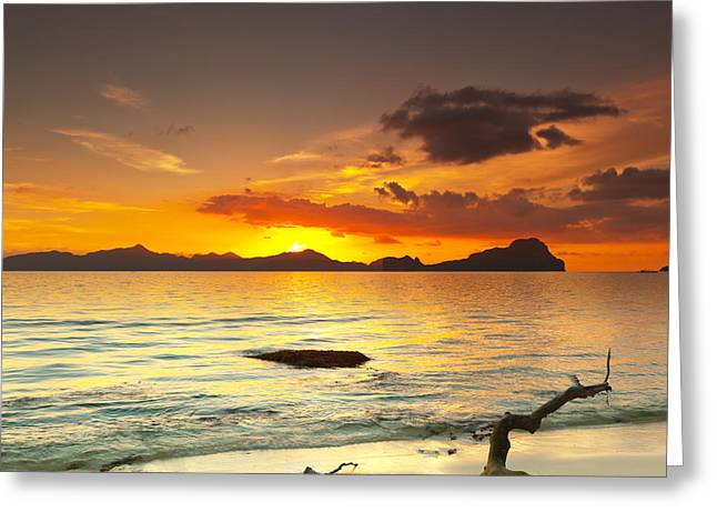 Tree Roots Greeting Cards - Sunset Greeting Card by MotHaiBaPhoto Prints