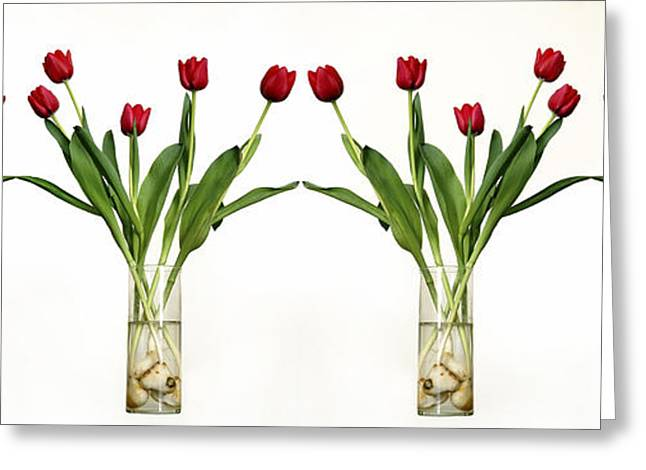 Glass Vase Greeting Cards - 4 Vases Of Tulips  Greeting Card by Eyal Fischer