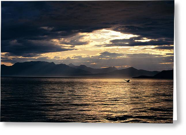 Far Above Greeting Cards - View Of Alaska Greeting Card by John Hyde - Printscapes