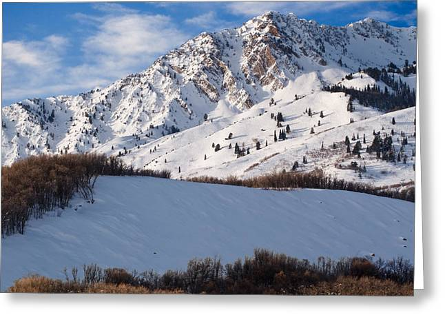 Best Sellers -  - Snowy Day Greeting Cards - Winter in the Wasatch Mountains of Northern Utah Greeting Card by Utah Images