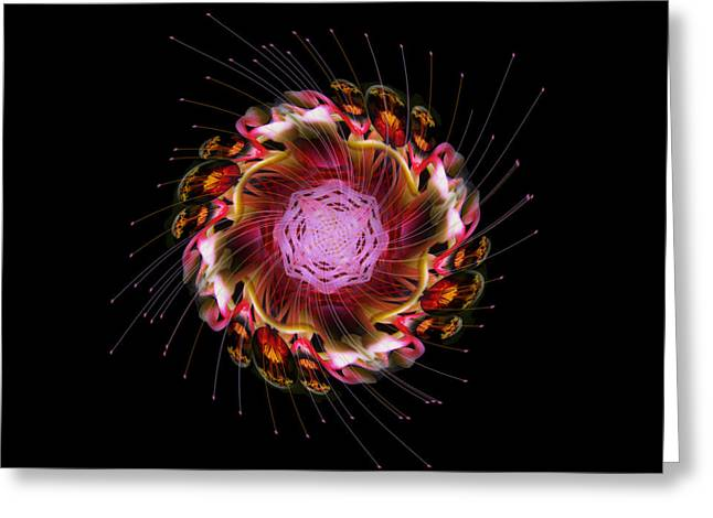 Recently Sold -  - Plankton Greeting Cards - 41 Greeting Card by Peter Holme III