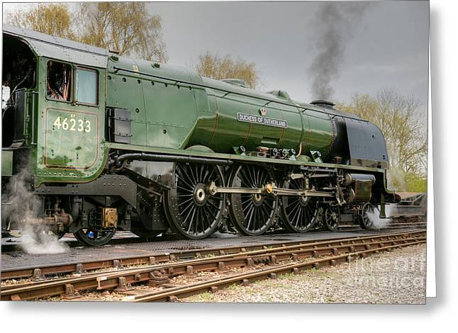Duchess Greeting Cards - 46233 Duchess Of Sutherland Greeting Card by David Birchall