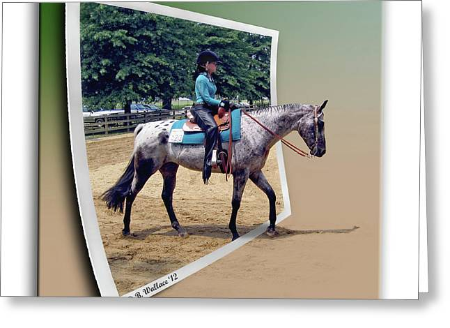 Centreville Greeting Cards - 4H Horse Competition Greeting Card by Brian Wallace