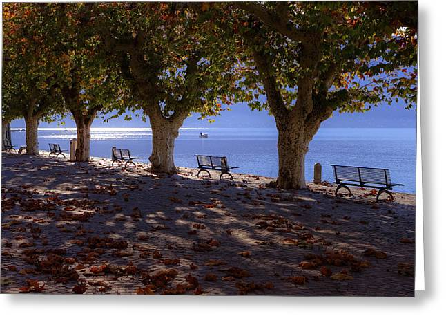 Desert Lake Greeting Cards - Ascona - Lake Maggiore Greeting Card by Joana Kruse