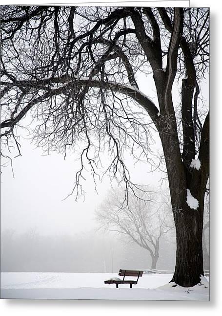 Haze Greeting Cards - Assiniboine Park, Winnipeg, Manitoba Greeting Card by Keith Levit