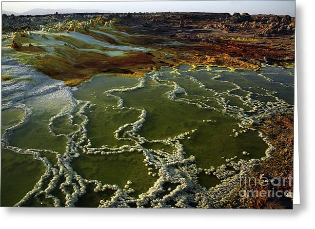 Vulcanology Greeting Cards - Dallol Geothermal Area, Danakil Greeting Card by Martin Rietze