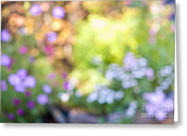 Garden Greeting Cards - Flower garden in sunshine Greeting Card by Elena Elisseeva