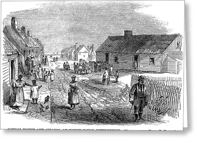 Freedman Greeting Cards - Freedmens Village, 1866 Greeting Card by Granger