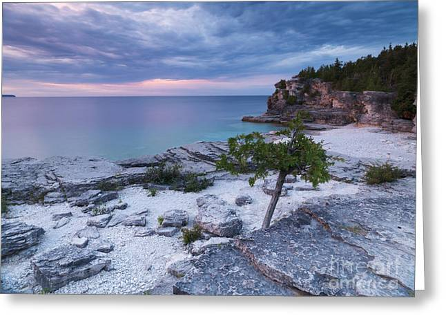 Beautiful Scenery Greeting Cards - Georgian Bay Cliffs at Sunset Greeting Card by Oleksiy Maksymenko