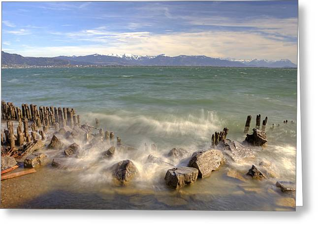 Lake Constance Greeting Cards - Lake Constance Greeting Card by Joana Kruse