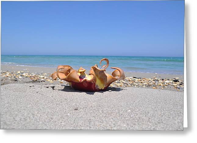 Beach Ceramics Greeting Cards - Medium Wave Bowl Greeting Card by Gibbs Baum