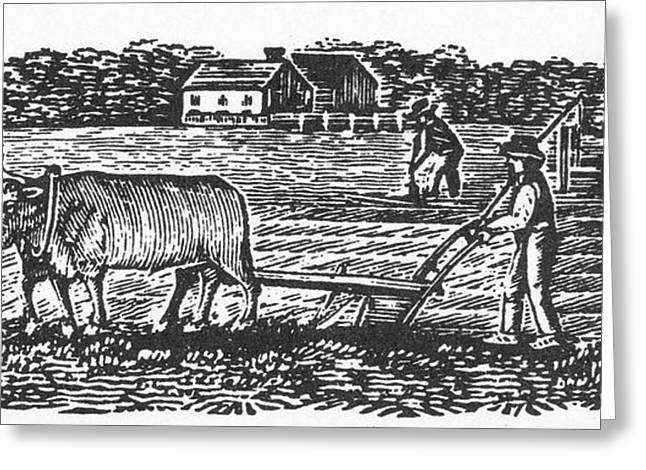 Farmers Field Greeting Cards - PLOUGHING, 19th CENTURY Greeting Card by Granger