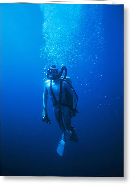 Underwater Breathing Greeting Cards - Scuba Diver Greeting Card by Alexis Rosenfeld