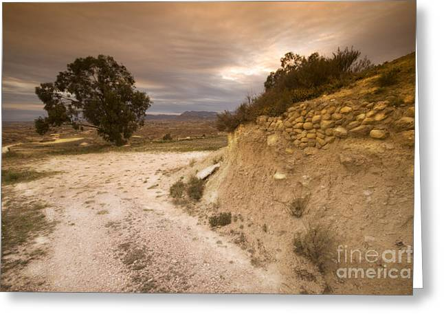 Costa Blanca Greeting Cards - Spanish landscape Greeting Card by Angel  Tarantella