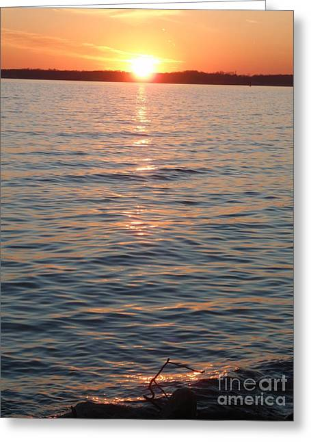 Reflection In Water Pyrography Greeting Cards - Sunset Chesapeake Bay Greeting Card by Valia Bradshaw
