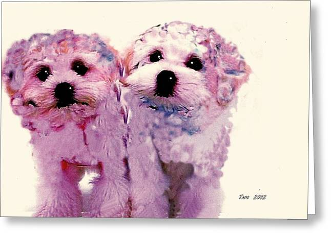 Puppies Pyrography Greeting Cards - Two  Greeting Card by Patrick Raffaelo