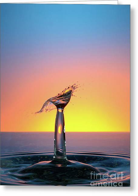 Sami Sarkis Greeting Cards - Water drops colliding to shape an umbrella splash Greeting Card by Sami Sarkis