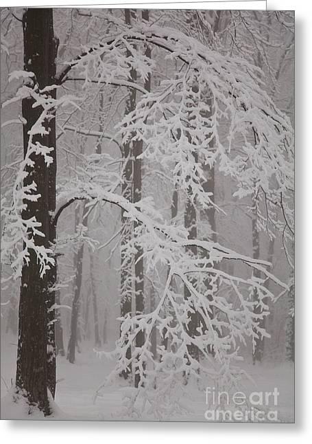 Snowy Day Greeting Cards - Winter Greeting Card by Gabriela Insuratelu