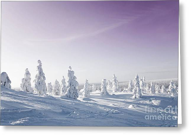 Snow-covered Landscape Greeting Cards - Winter Greeting Card by Kati Molin