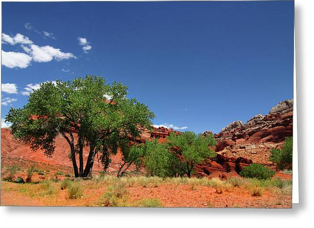 Monolith Greeting Cards - Capitol Reef National Park Greeting Card by Southern Utah  Photography