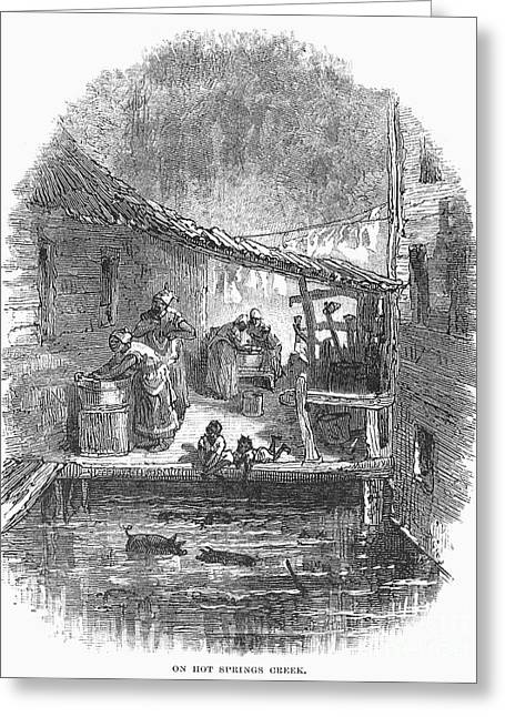 African-american Photographs Greeting Cards - Arkansas: Hot Springs, 1878 Greeting Card by Granger
