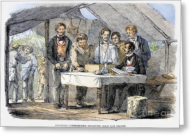 Prospector Greeting Cards - Australian Gold Rush, 1852 Greeting Card by Granger