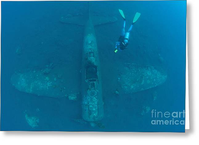 New Britain Photographs Greeting Cards - Diver Explores The Wreck Greeting Card by Steve Jones
