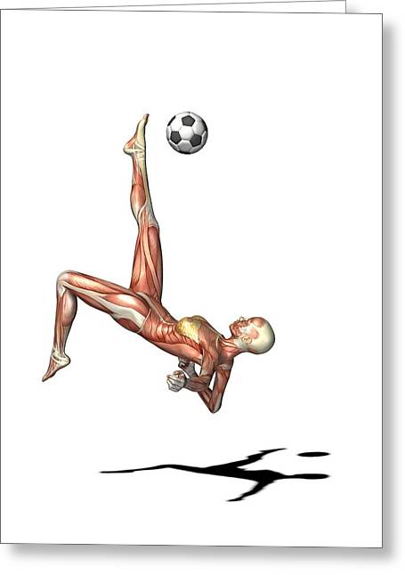 Bicycle Kick Greeting Cards - Female Muscles, Artwork Greeting Card by Friedrich Saurer