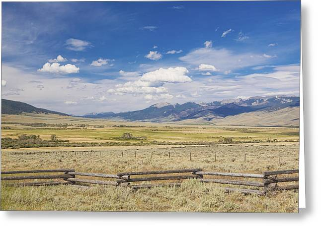 Us Open Photographs Greeting Cards - Untitled Greeting Card by Douglas Orton