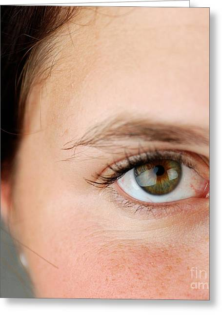 Eyelash Greeting Cards - Womans Eye Greeting Card by Photo Researchers, Inc.