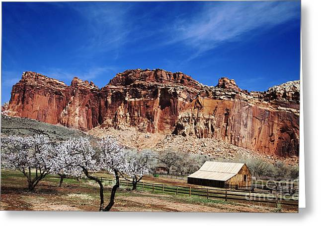 Monolith Greeting Cards - Capitol Reef National  Park Greeting Card by Mark Smith