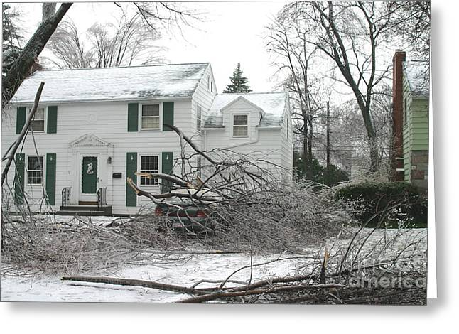 Winter Storm Greeting Cards - Ice Storm Greeting Card by Ted Kinsman