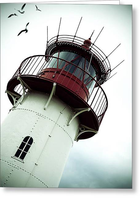 Sea Gulls Greeting Cards - Lighthouse Greeting Card by Joana Kruse