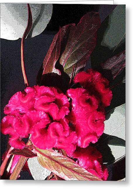 Floral Photos Greeting Cards - Nature Series Greeting Card by Ginger Geftakys