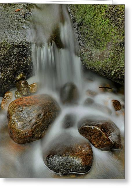 Great Smokey Mountains Greeting Cards - Water Movement Detail Greeting Card by Stephen  Vecchiotti