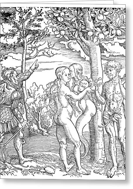 Adam Drawings Greeting Cards - ADAM and EVE Greeting Card by Granger
