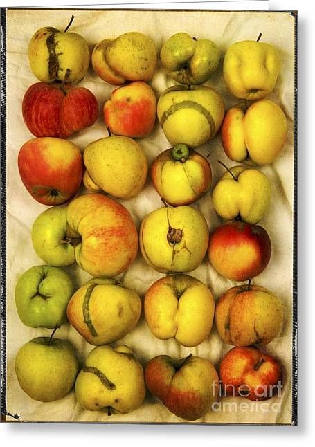 Apple Crates Greeting Cards - Apples Greeting Card by Bernard Jaubert