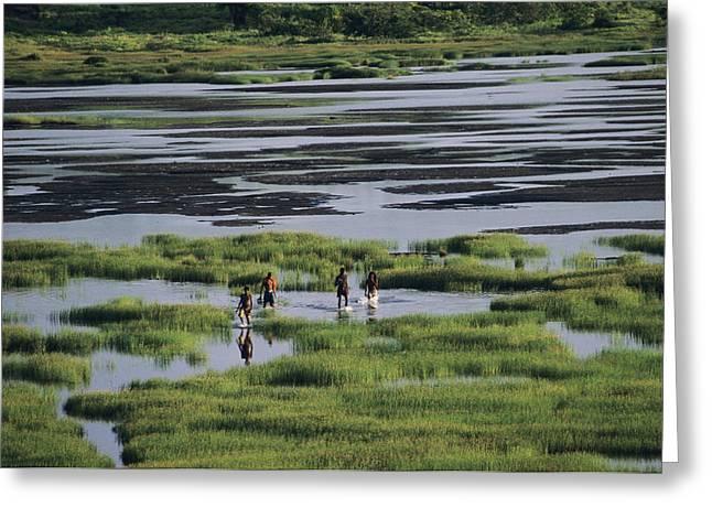 Quartet Greeting Cards - Asphalt Lake Greeting Card by David Nunuk