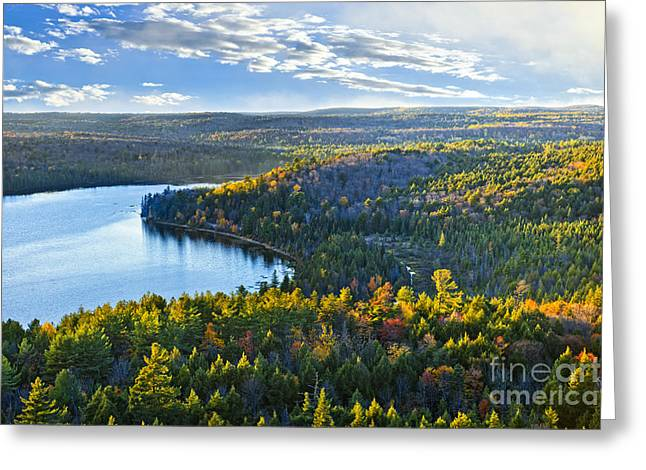Deciduous Greeting Cards - Fall forest and lake Greeting Card by Elena Elisseeva