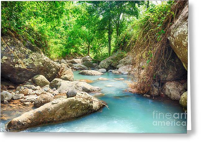 Nature Scene Greeting Cards - Stream Greeting Card by MotHaiBaPhoto Prints